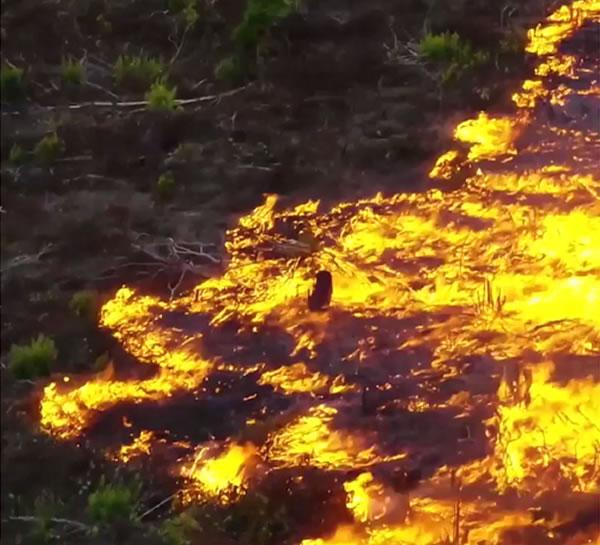 Bolsonaro dice que Brasil carece de recursos para combatir los incendios forestales