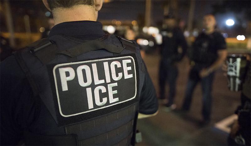 traer de vuelta a algunos deportados