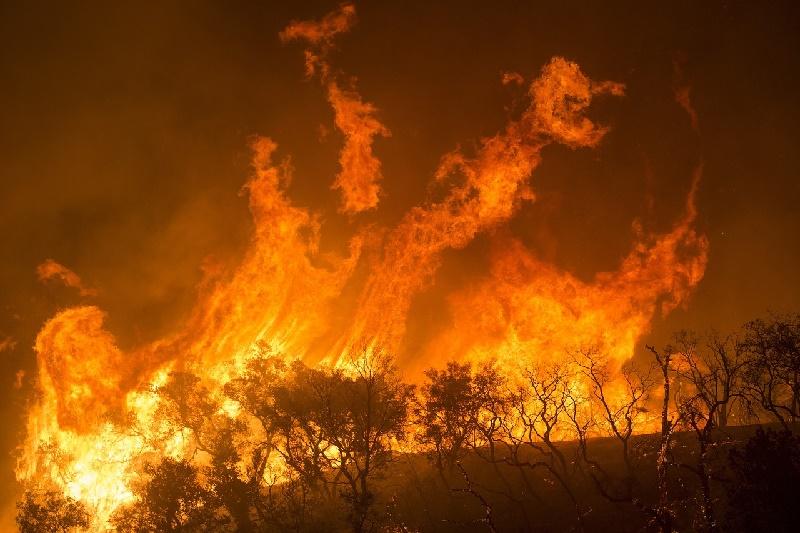 Incendios forestales en noroeste de EE.UU. calcinan grandes áreas en tres estados